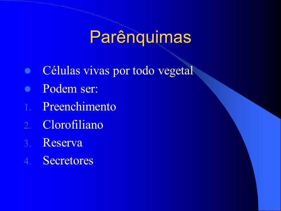 Parênquimas Células vivas por todo vegetal Podem ser: 1. Preenchimento 2. Clorofiliano 3. Reserva 4. Secretores