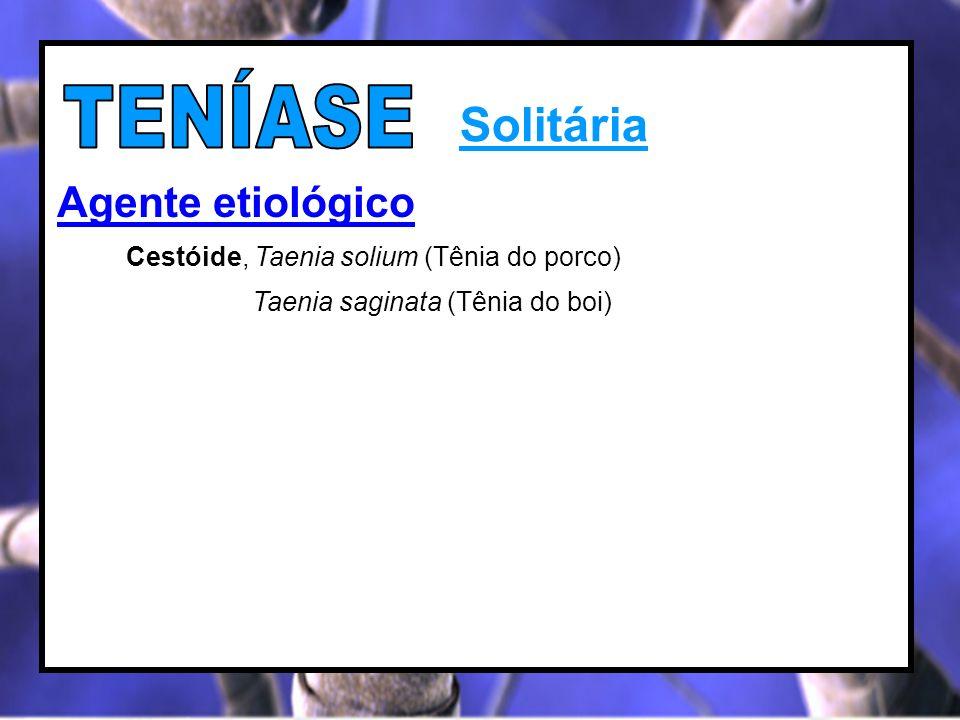 Solitária Agente etiológico Cestóide, Taenia solium (Tênia do porco) Taenia saginata (Tênia do boi)