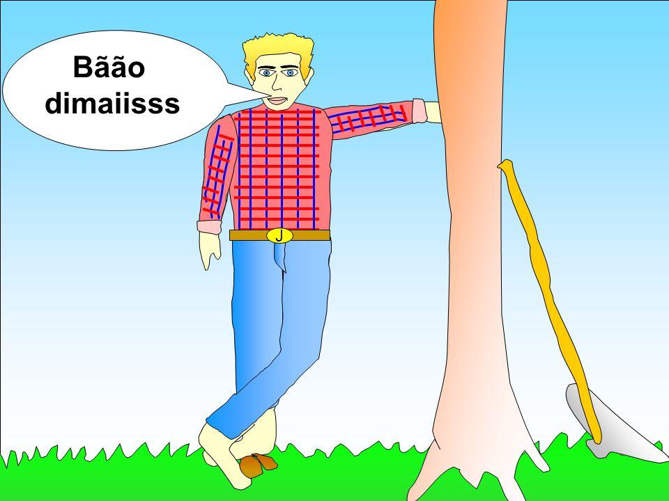 J Bãão dimaiisss