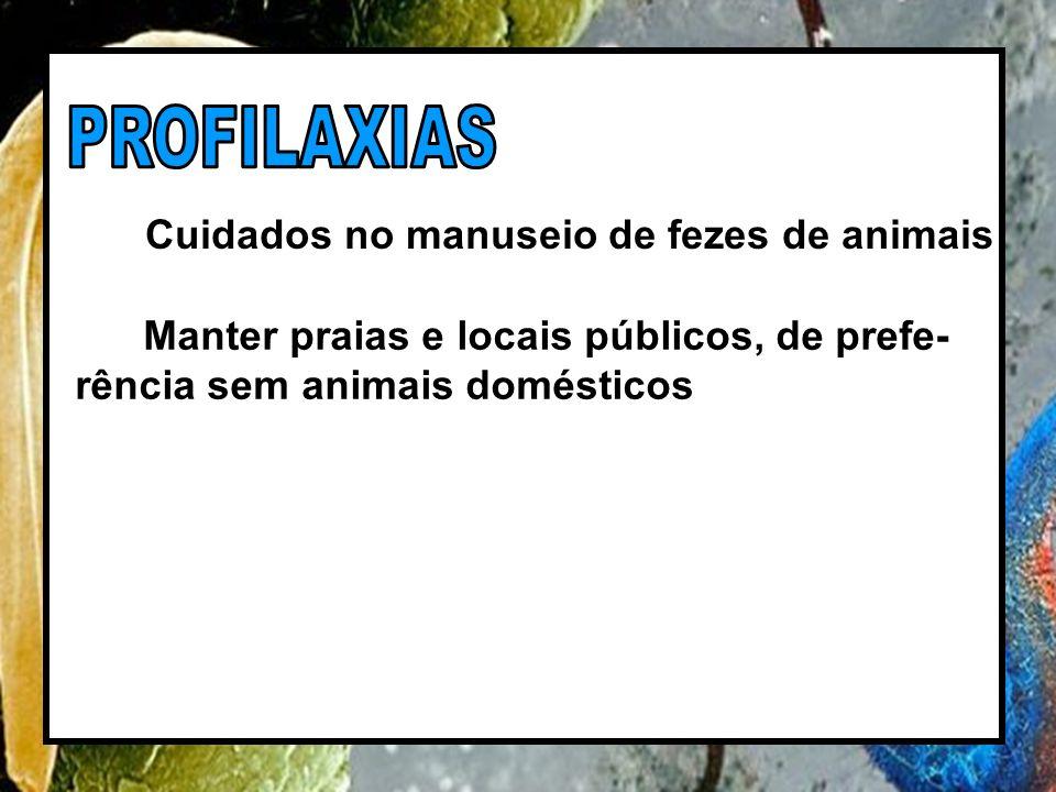 Cuidados no manuseio de fezes de animais Manter praias e locais públicos, de prefe- rência sem animais domésticos