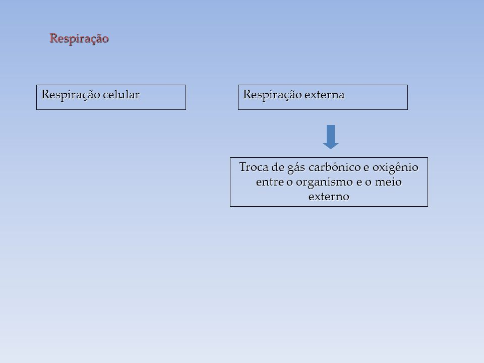 Células Oxigênio Gás carbônico Difusão