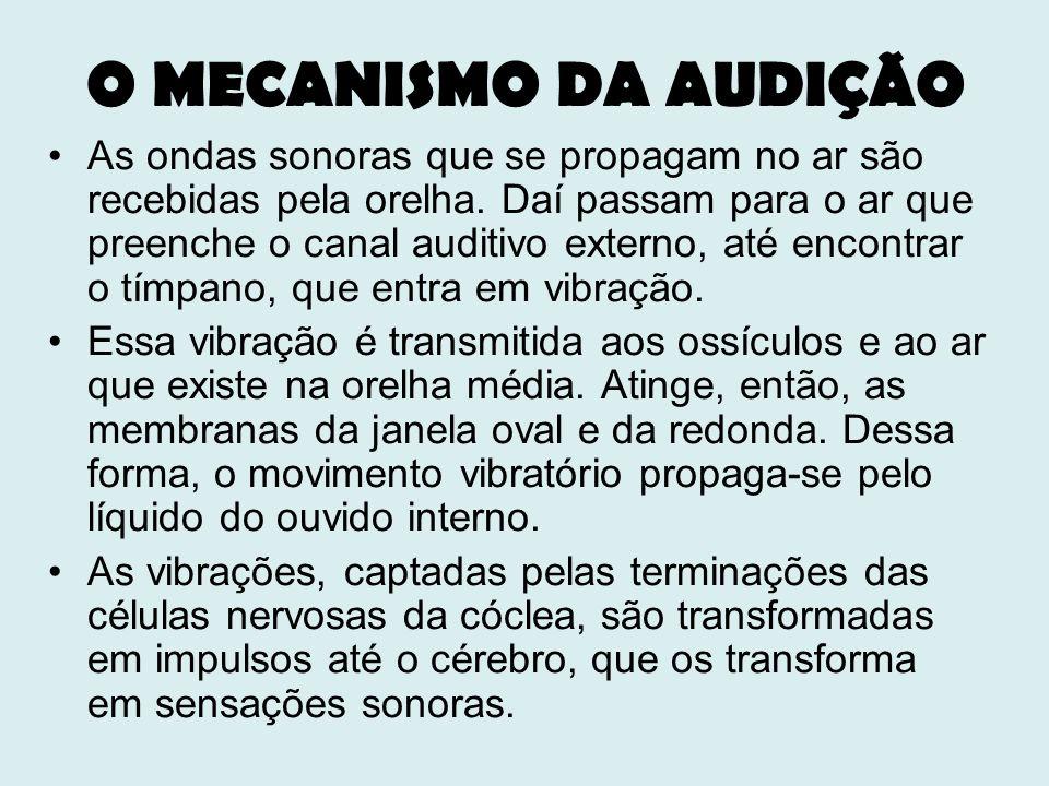 O MECANISMO DA AUDIÇÃO As ondas sonoras que se propagam no ar são recebidas pela orelha. Daí passam para o ar que preenche o canal auditivo externo, a