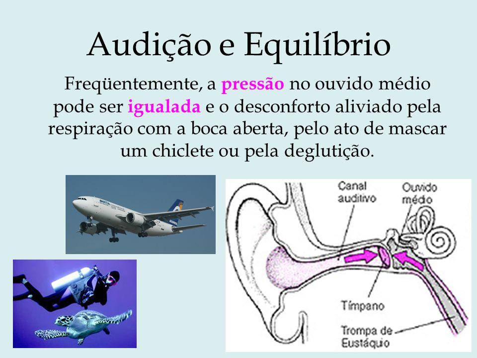 Audição e Equilíbrio Freqüentemente, a pressão no ouvido médio pode ser igualada e o desconforto aliviado pela respiração com a boca aberta, pelo ato