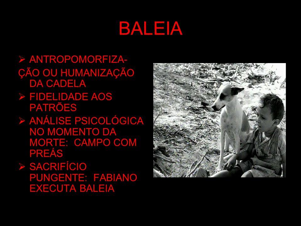 BALEIA ANTROPOMORFIZA- ÇÃO OU HUMANIZAÇÃO DA CADELA FIDELIDADE AOS PATRÕES ANÁLISE PSICOLÓGICA NO MOMENTO DA MORTE: CAMPO COM PREÁS SACRIFÍCIO PUNGENT