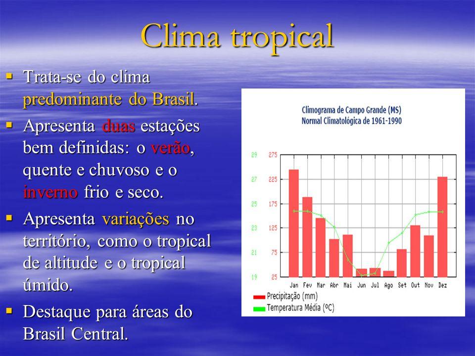 Clima tropical Trata-se do clima predominante do Brasil. Trata-se do clima predominante do Brasil. Apresenta duas estações bem definidas: o verão, que