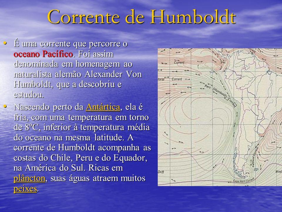 Corrente de Humboldt É uma corrente que percorre o oceano Pacífico. Foi assim denominada em homenagem ao naturalista alemão Alexander Von Humboldt, qu