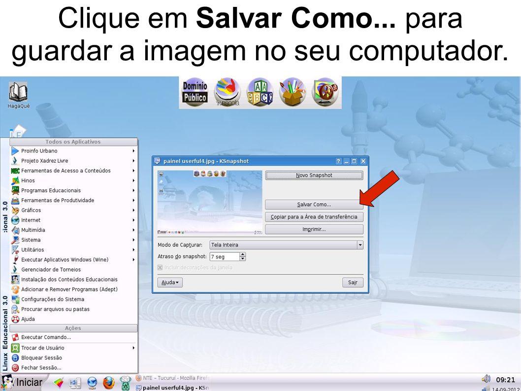 Clique em Salvar Como... para guardar a imagem no seu computador.