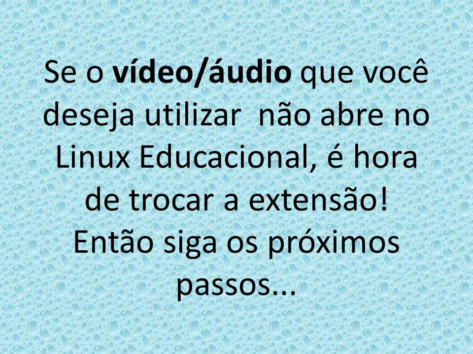 O vídeo selecionado na imagem está na extensão flv e não abre no Linux Educacional.