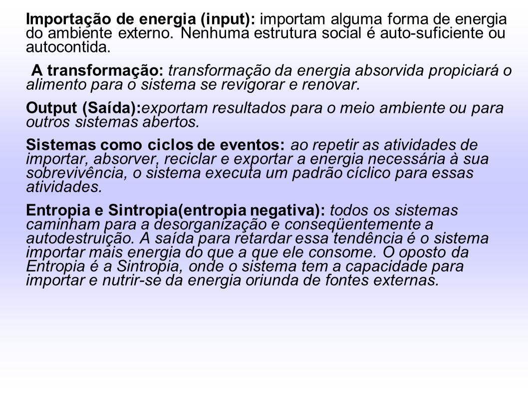 Importação de energia (input): importam alguma forma de energia do ambiente externo. Nenhuma estrutura social é auto-suficiente ou autocontida. A tran