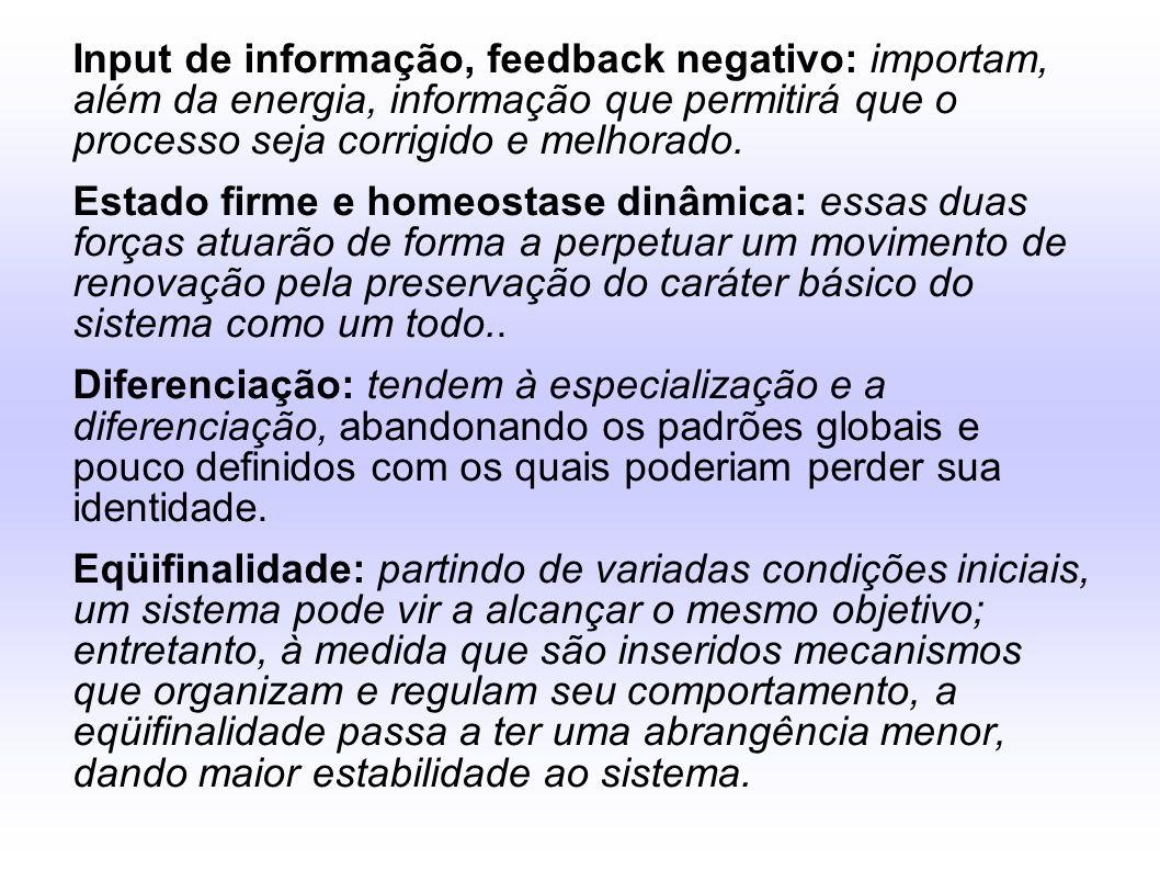 Input de informação, feedback negativo: importam, além da energia, informação que permitirá que o processo seja corrigido e melhorado. Estado firme e