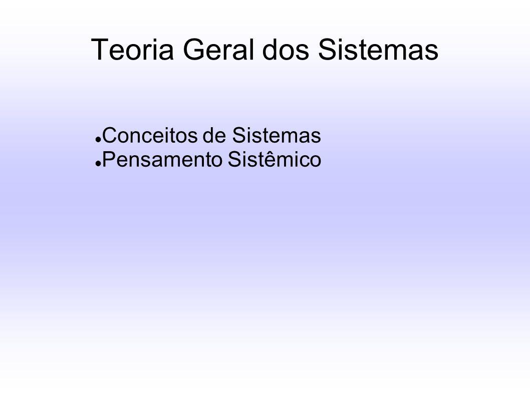 Teoria Geral dos Sistemas Conceitos de Sistemas Pensamento Sistêmico