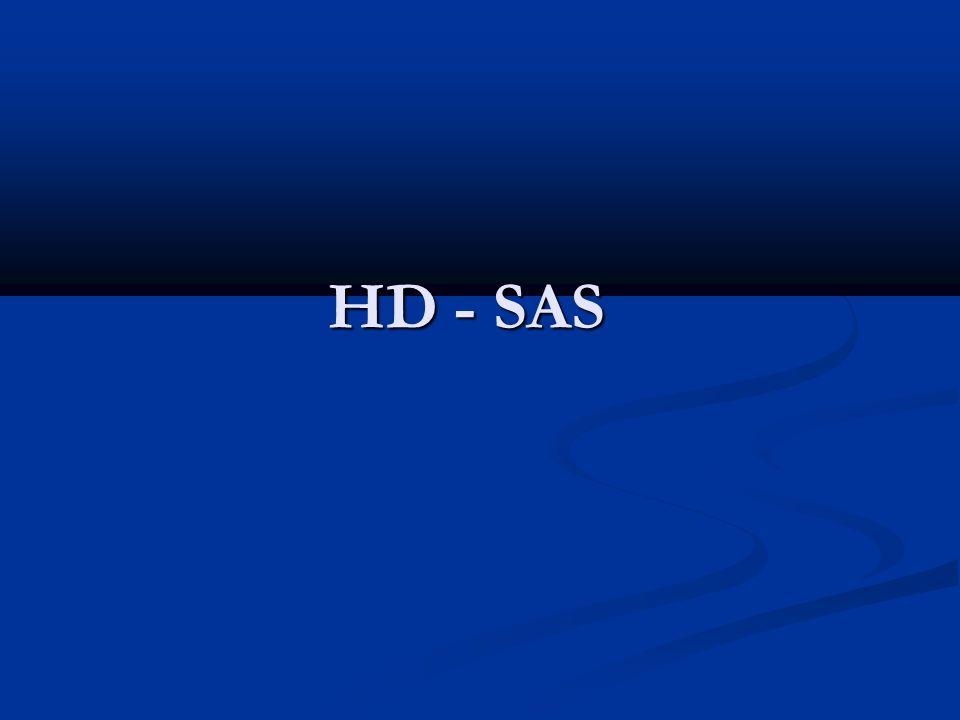 HD - SAS