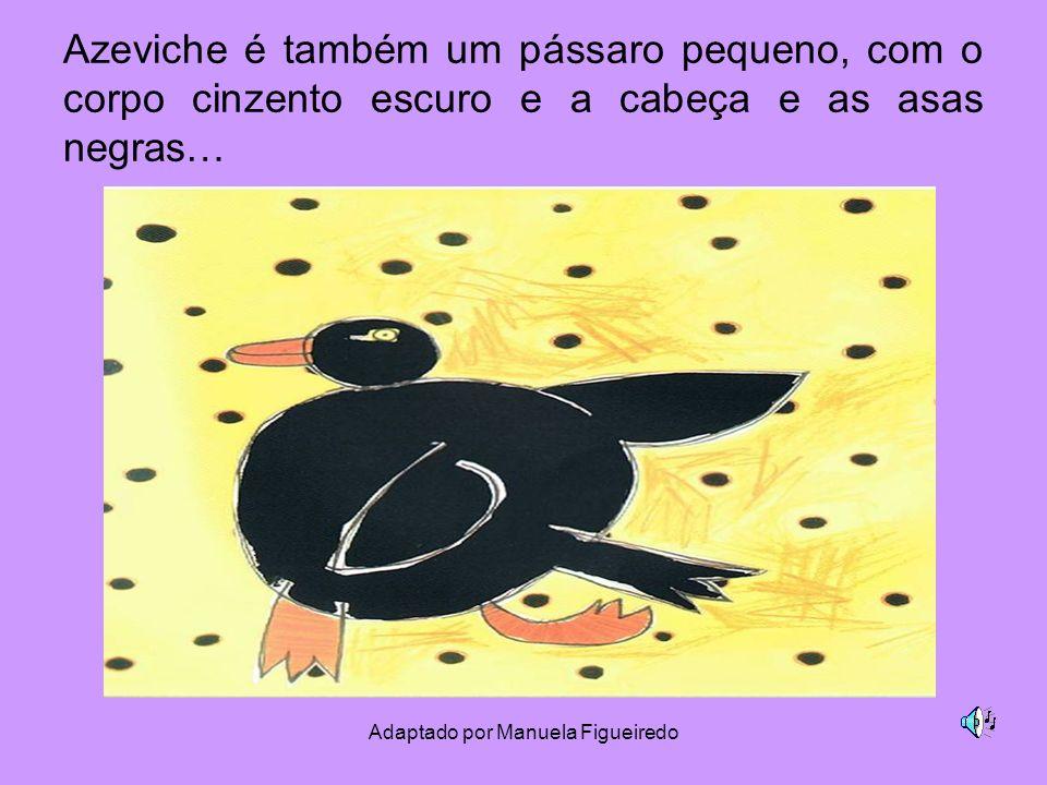 Adaptado por Manuela Figueiredo Azeviche é também um pássaro pequeno, com o corpo cinzento escuro e a cabeça e as asas negras…