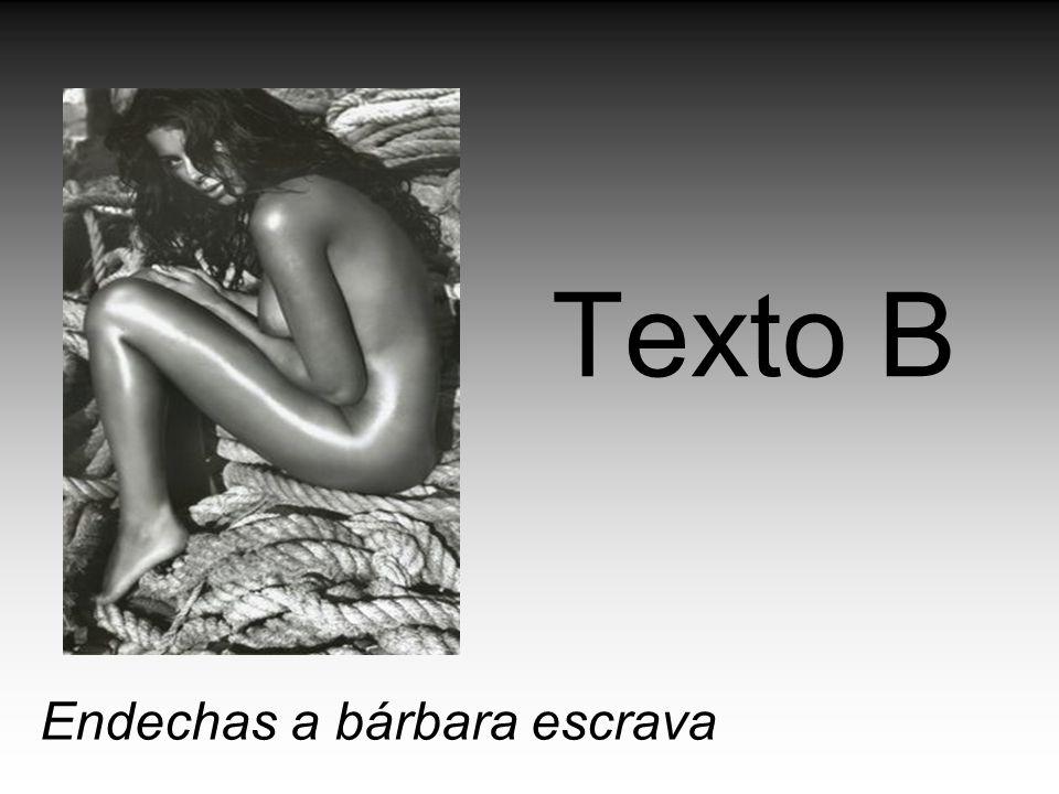 Texto B Endechas a bárbara escrava