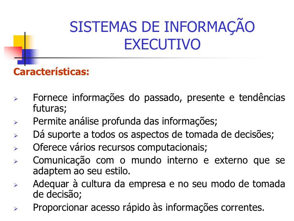 Características: Fornece informações do passado, presente e tendências futuras; Permite análise profunda das informações; Dá suporte a todos os aspect