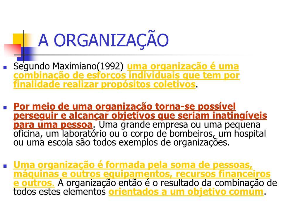 A ORGANIZAÇÃO Segundo Maximiano(1992) uma organização é uma combinação de esforços individuais que tem por finalidade realizar propósitos coletivos.