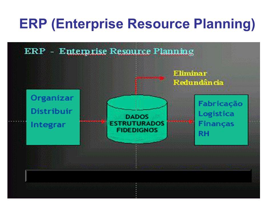 11 ERP (Enterprise Resource Planning)