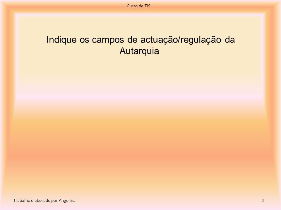 Indique os campos de actuação/regulação da Autarquia Curso de TIS Trabalho elaborado por Angelina 2