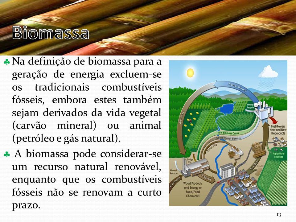 Curso Técnico de Informática e Sistemas Na definição de biomassa para a geração de energia excluem-se os tradicionais combustíveis fósseis, embora est