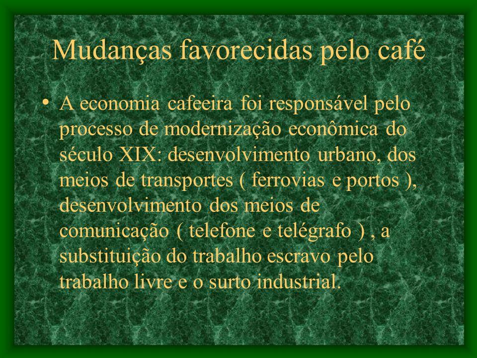 Mudanças favorecidas pelo café A economia cafeeira foi responsável pelo processo de modernização econômica do século XIX: desenvolvimento urbano, dos