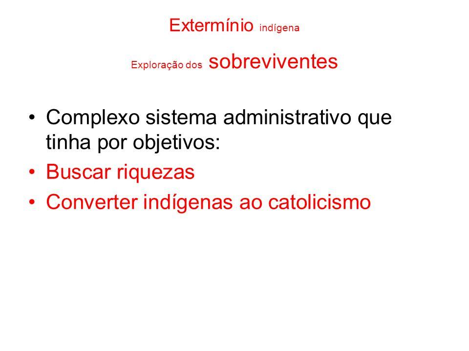 Extermínio indígena Exploração dos sobreviventes Complexo sistema administrativo que tinha por objetivos: Buscar riquezas Converter indígenas ao catol