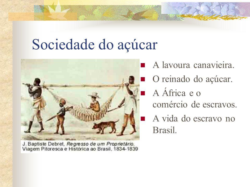Sociedade do açúcar A lavoura canavieira. O reinado do açúcar. A África e o comércio de escravos. A vida do escravo no Brasil.