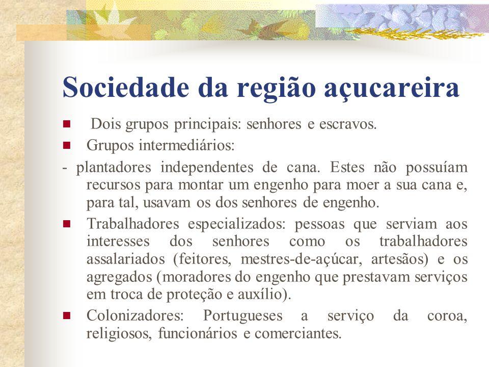 Sociedade da região açucareira Dois grupos principais: senhores e escravos. Grupos intermediários: - plantadores independentes de cana. Estes não poss