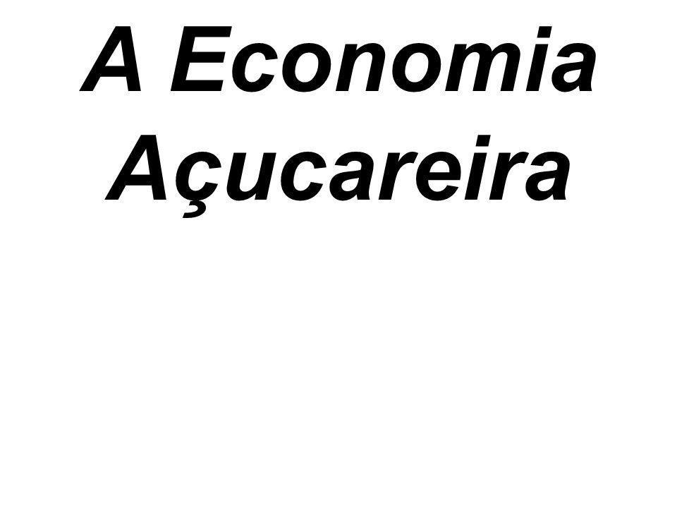. ACUMULAR RIQUEZAS O único objetivo dos portugueses na colonização das terras brasileiras era acumular riquezas.