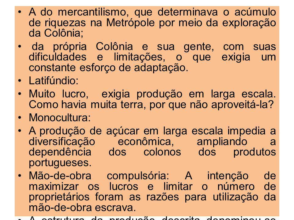 A do mercantilismo, que determinava o acúmulo de riquezas na Metrópole por meio da exploração da Colônia; da própria Colônia e sua gente, com suas dificuldades e limitações, o que exigia um constante esforço de adaptação.