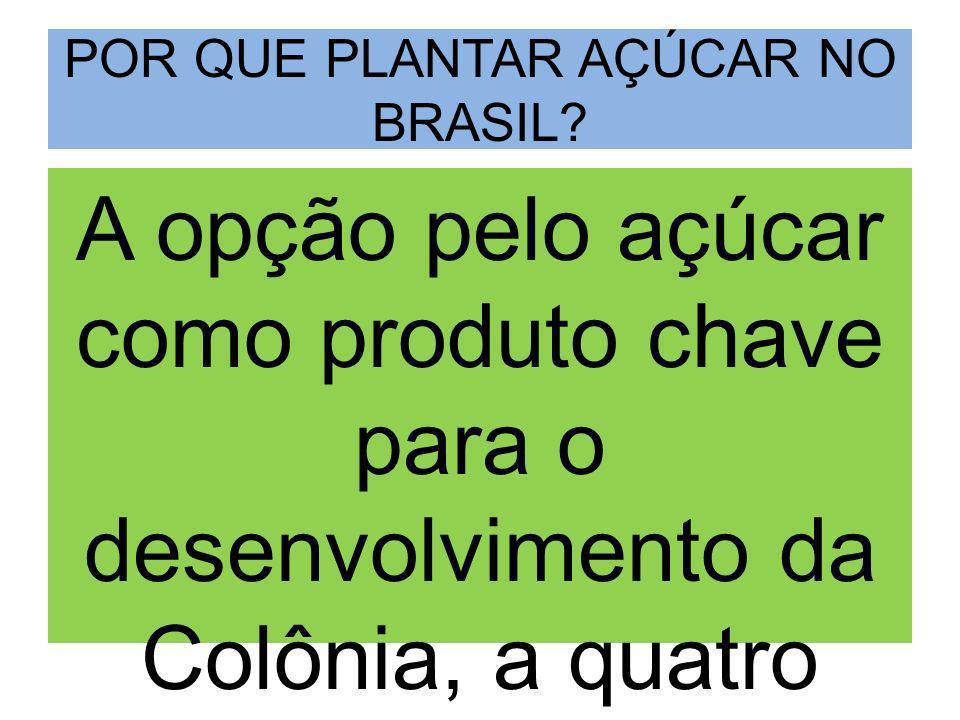MOTIVOS O açúcar era adaptável às condições climáticas e territoriais do Brasil.