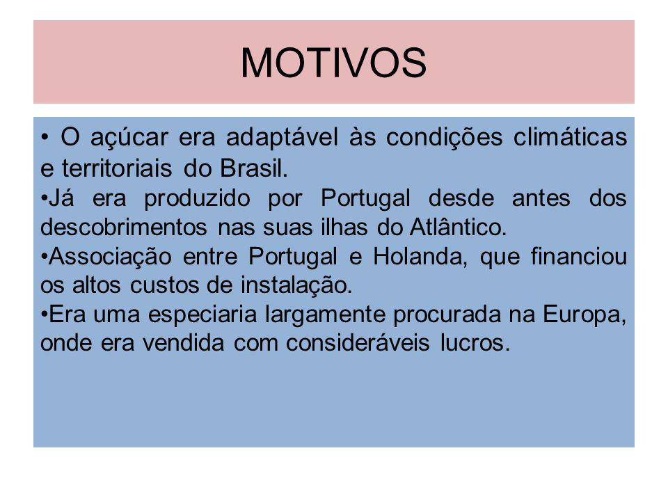 MOTIVOS O açúcar era adaptável às condições climáticas e territoriais do Brasil. Já era produzido por Portugal desde antes dos descobrimentos nas suas