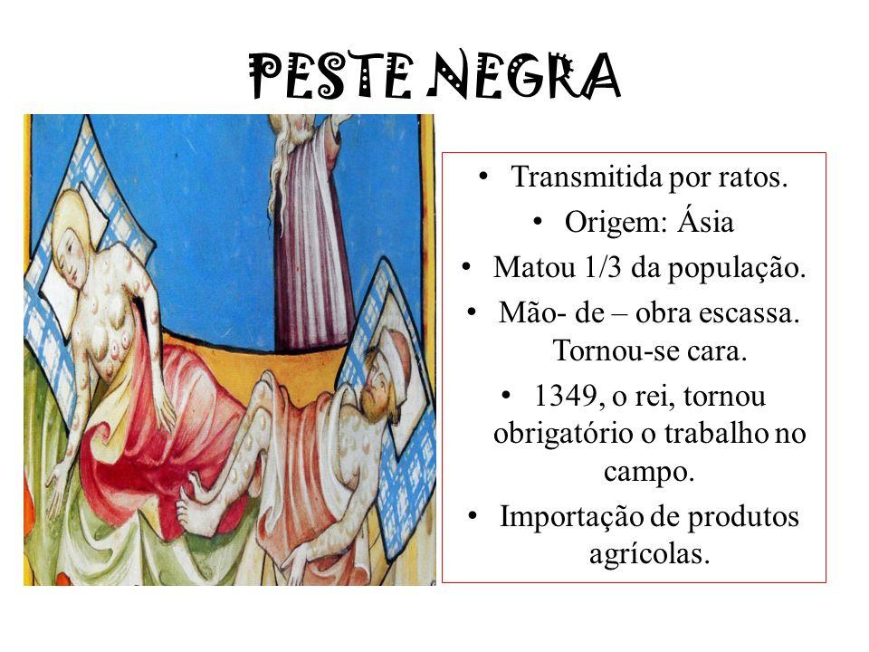 PESTE NEGRA Transmitida por ratos. Origem: Ásia Matou 1/3 da população. Mão- de – obra escassa. Tornou-se cara. 1349, o rei, tornou obrigatório o trab