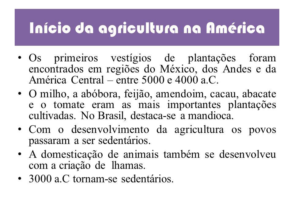 Início da agricultura na América Os primeiros vestígios de plantações foram encontrados em regiões do México, dos Andes e da América Central – entre 5