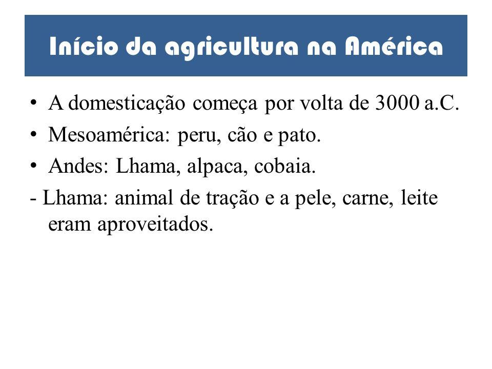Início da agricultura na América A domesticação começa por volta de 3000 a.C. Mesoamérica: peru, cão e pato. Andes: Lhama, alpaca, cobaia. - Lhama: an