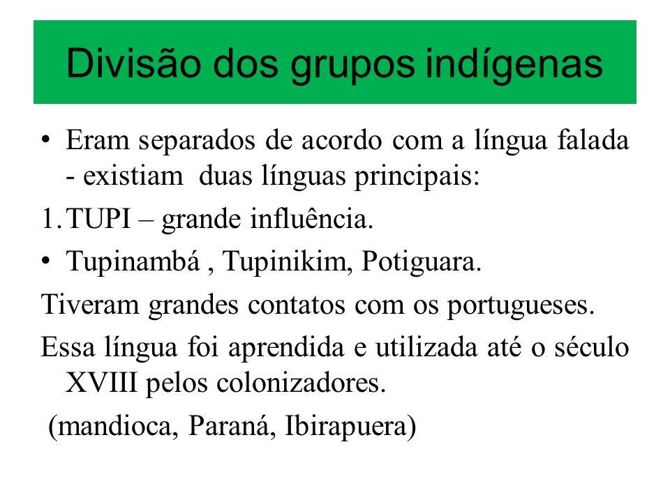 Divisão dos grupos indígenas Eram separados de acordo com a língua falada - existiam duas línguas principais: 1. TUPI – grande influência. Tupinambá,