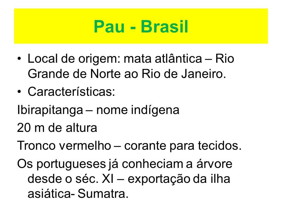 Pau - Brasil Local de origem: mata atlântica – Rio Grande de Norte ao Rio de Janeiro. Características: Ibirapitanga – nome indígena 20 m de altura Tro