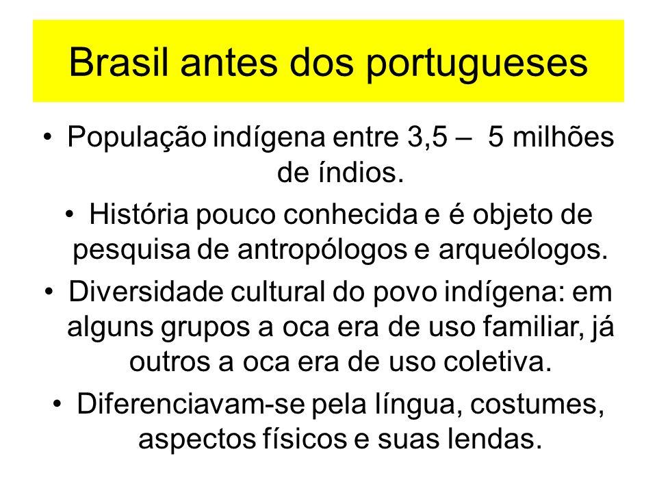 Brasil antes dos portugueses População indígena entre 3,5 – 5 milhões de índios. História pouco conhecida e é objeto de pesquisa de antropólogos e arq