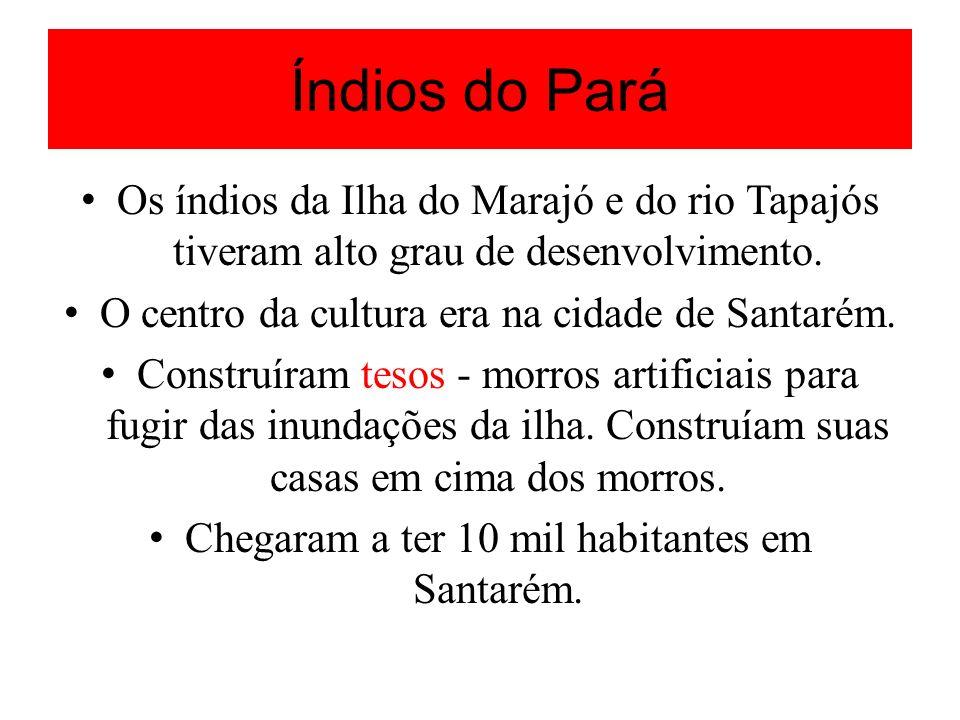 Índios do Pará Os índios da Ilha do Marajó e do rio Tapajós tiveram alto grau de desenvolvimento. O centro da cultura era na cidade de Santarém. Const