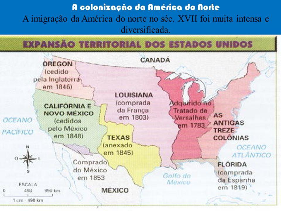 A colonização da América do Norte A imigração da América do norte no séc. XVII foi muita intensa e diversificada.