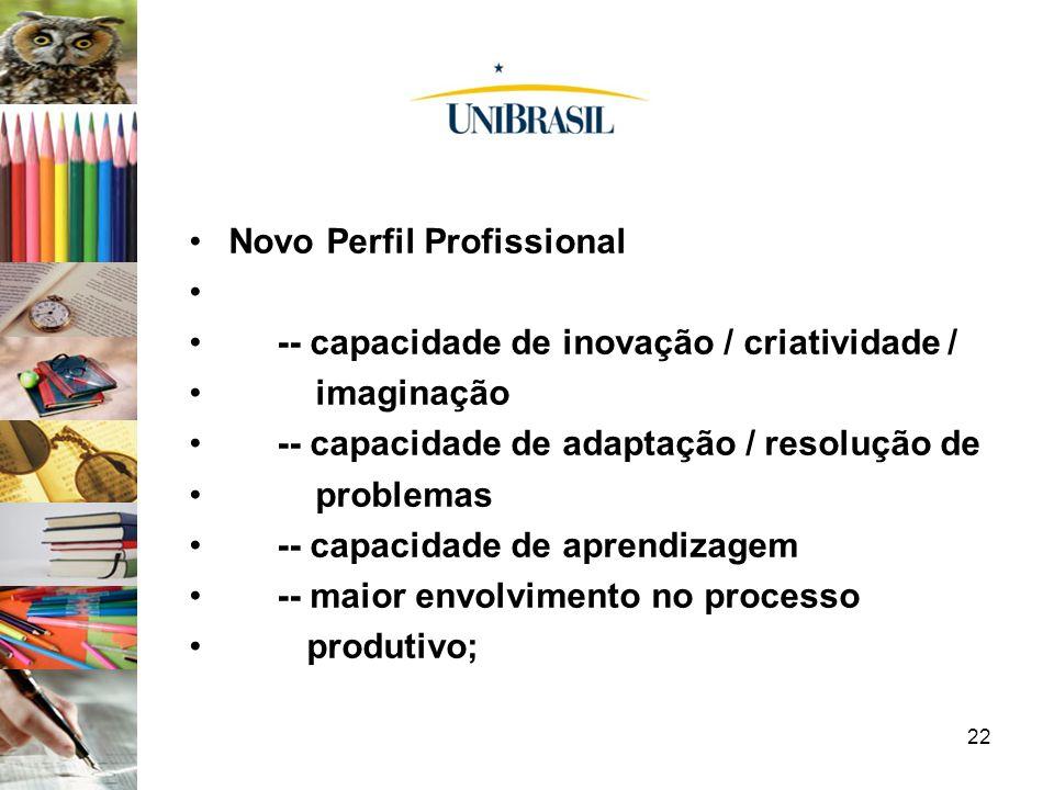 22 Novo Perfil Profissional -- capacidade de inovação / criatividade / imaginação -- capacidade de adaptação / resolução de problemas -- capacidade de