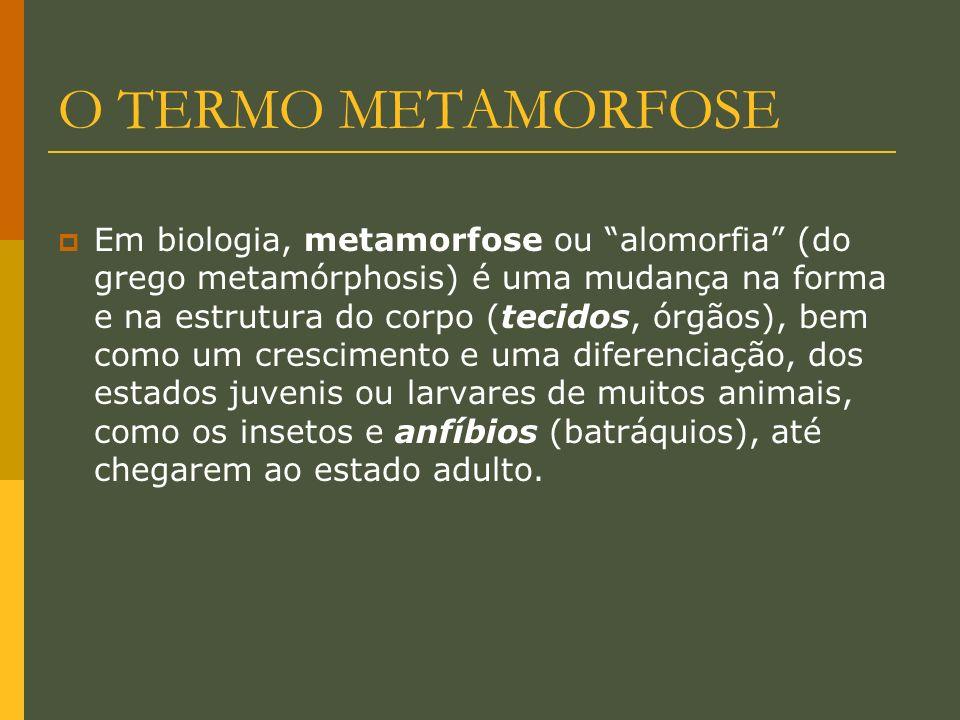 O TERMO METAMORFOSE Em biologia, metamorfose ou alomorfia (do grego metamórphosis) é uma mudança na forma e na estrutura do corpo (tecidos, órgãos), b