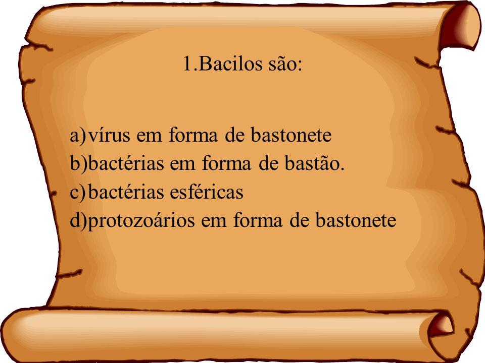 1.Bacilos são: a)vírus em forma de bastonete b)bactérias em forma de bastão. c)bactérias esféricas d)protozoários em forma de bastonete