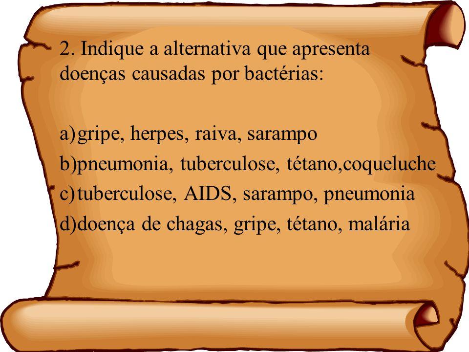 2. Indique a alternativa que apresenta doenças causadas por bactérias: a)gripe, herpes, raiva, sarampo b)pneumonia, tuberculose, tétano,coqueluche c)t
