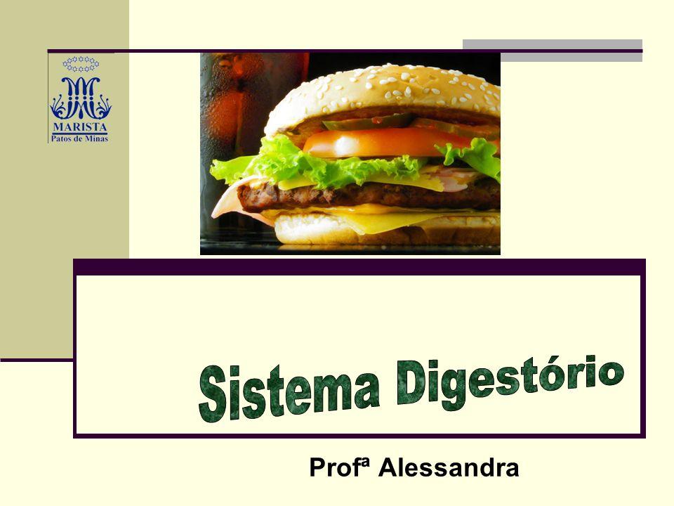 Digestão A enzima...É produzida no...Ao interagir com......resulta em...