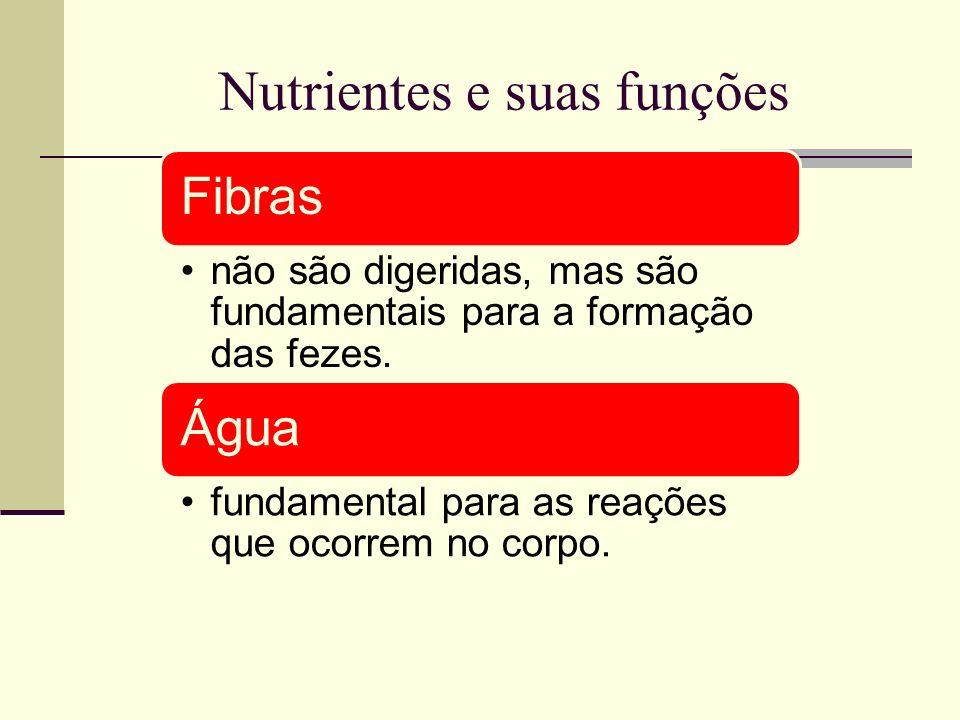Nutrientes e suas funções Fibras não são digeridas, mas são fundamentais para a formação das fezes. Água fundamental para as reações que ocorrem no co