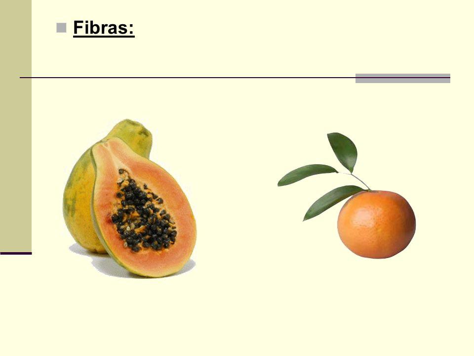 Fibras:
