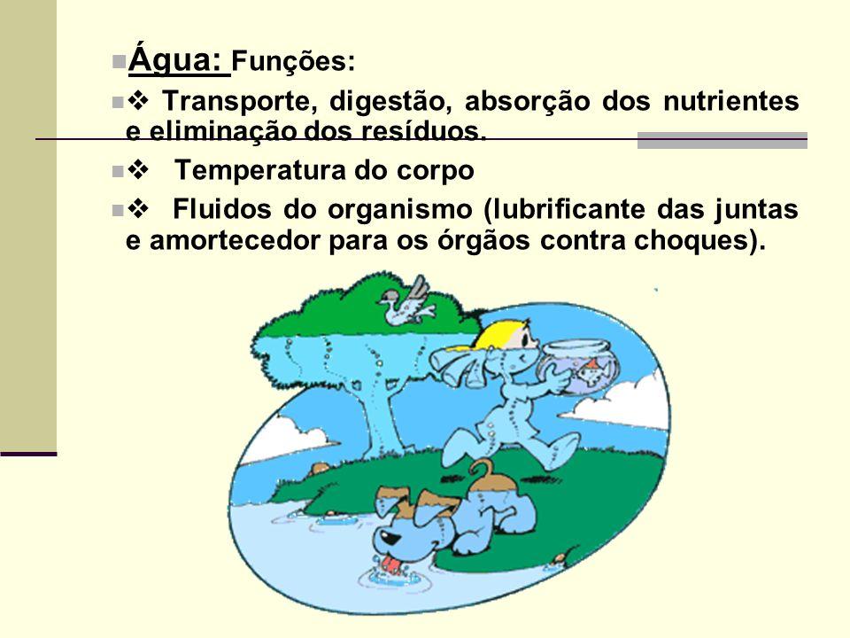 Água: Funções: Transporte, digestão, absorção dos nutrientes e eliminação dos resíduos. Temperatura do corpo Fluidos do organismo (lubrificante das ju