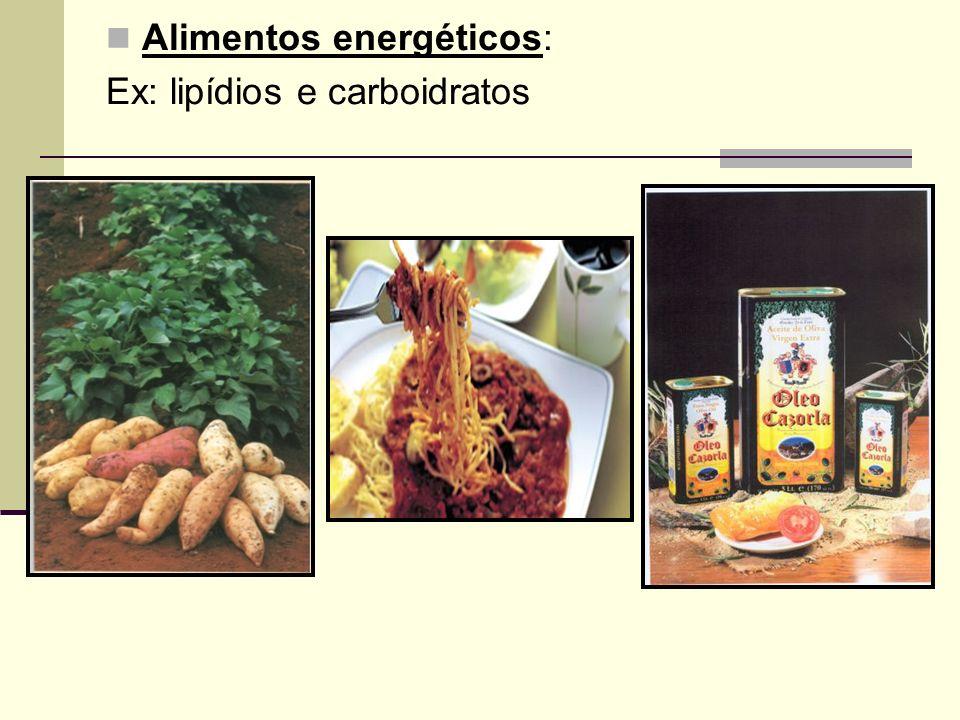 Alimentos energéticos: Ex: lipídios e carboidratos