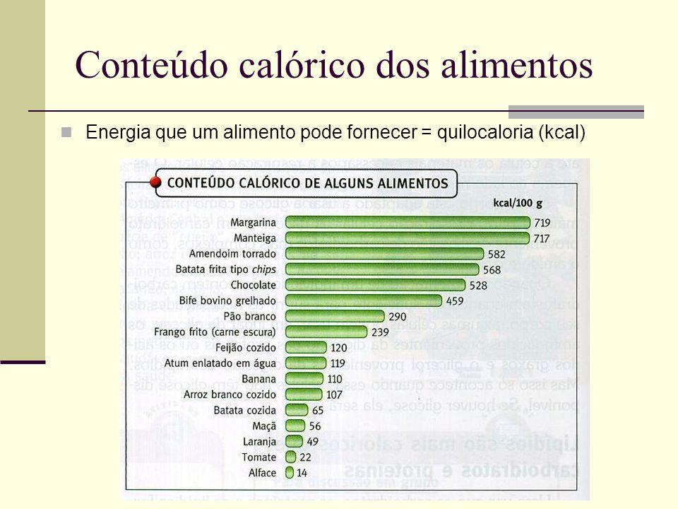 Conteúdo calórico dos alimentos Energia que um alimento pode fornecer = quilocaloria (kcal)