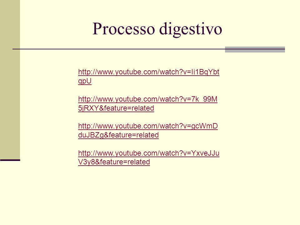 Processo digestivo http://www.youtube.com/watch?v=Ii1BqYbt qpU http://www.youtube.com/watch?v=7k_99M 5jRXY&feature=related http://www.youtube.com/watc